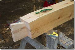 The dovetailed tenon half of the locked mortise and tenon joint.