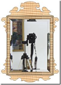 Elegant American Chippendale Mirror